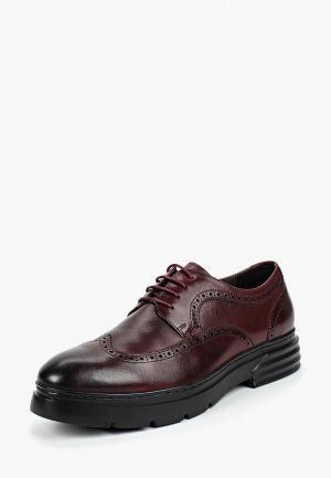 Туфли Marco Lippi. Цвет: бордовый