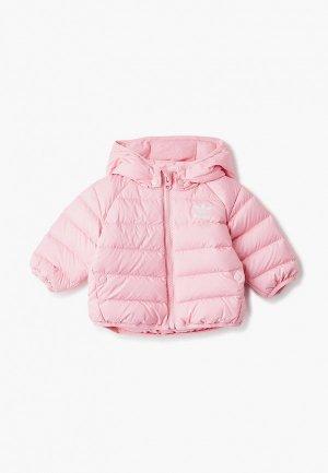 Пуховик adidas Originals. Цвет: розовый