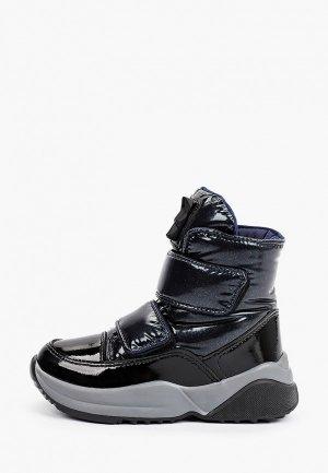 Ботинки Jog Dog. Цвет: синий