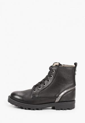 Ботинки Kickers. Цвет: черный
