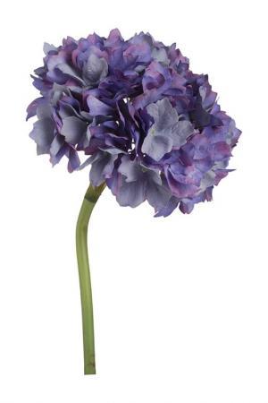 Цветок Гортензия 36 см ГЛАСАР. Цвет: бежевый