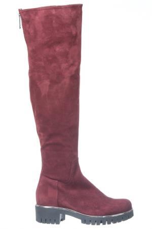 Boots LORETTA PETTINARI. Цвет: burgundy