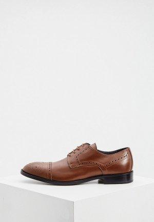Туфли Pollini. Цвет: коричневый