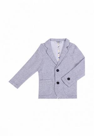 Пиджак Mimioriki. Цвет: серый